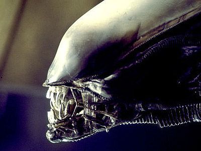 Exclusive: Tony Scott Confirms Carl Rinsch is Directing New ALIEN ...