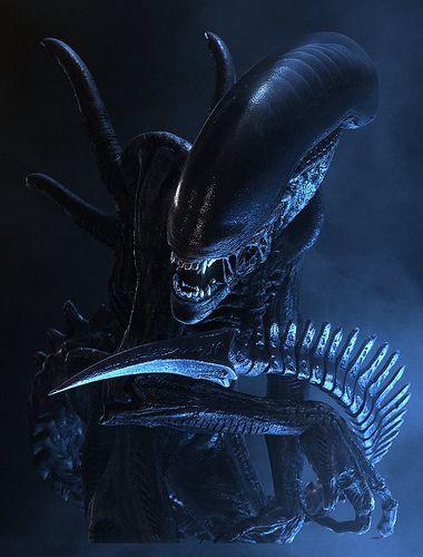 alien_xenomorph_02.jpg