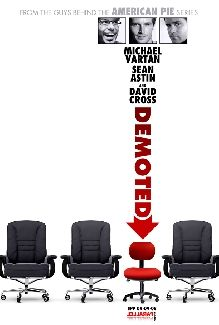 demoted_movie_poster_01.jpg