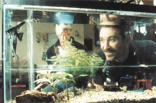 fish_called_wanda_movie_image_michael_palin_kevin_kline_01.jpg