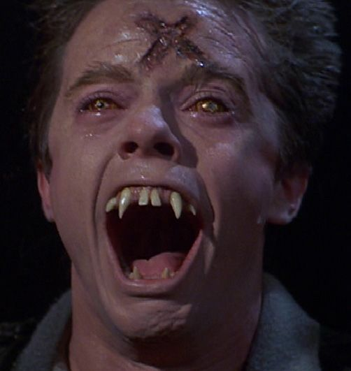 Fright Night movie 1985 (3).jpg
