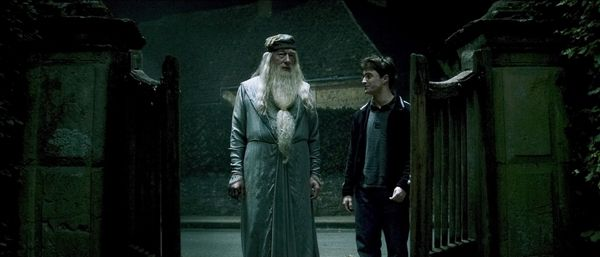 harry_potter_and_the_half_blood_prince_movie_image_daniel_radcliffe_and_michael_gambon.jpg