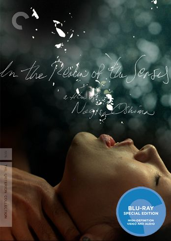 In the Realm of the Senses movie image.jpg