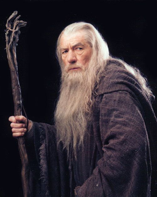 fellowship_ring_movie_image_ian_mckellen_gandalf_01.jpg