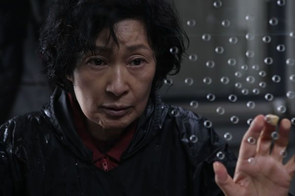 movie_image_mother_bong_joon_ho_01.jpg