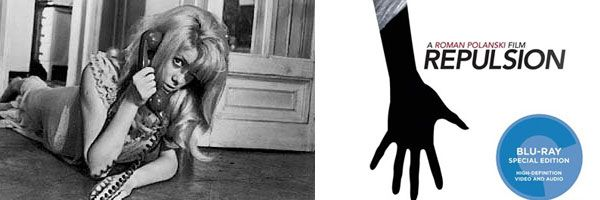 Repulsion movie image - slice.jpg
