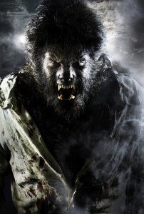 the_wolfman_movie_image_benicio_del_toro_as_the_wolfman_l.jpg
