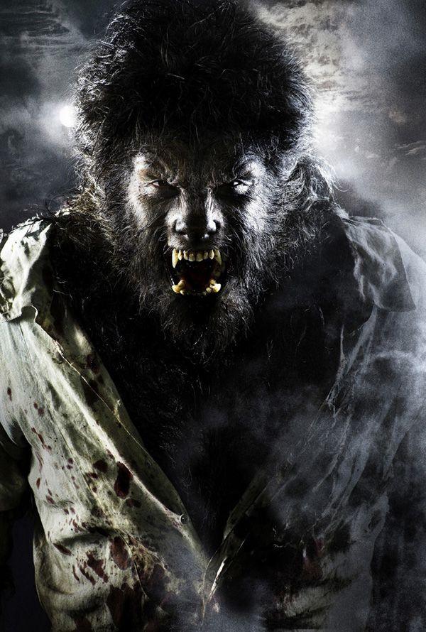 the_wolfman_movie_image_benicio_del_toro_as_the_wolfman_.jpg