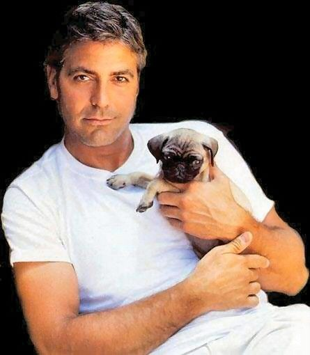 George Clooney Picture