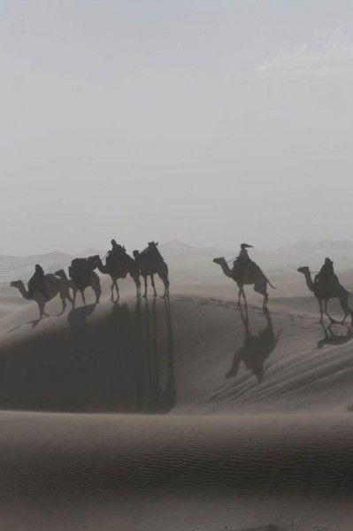 queen-of-the-desert-image-2