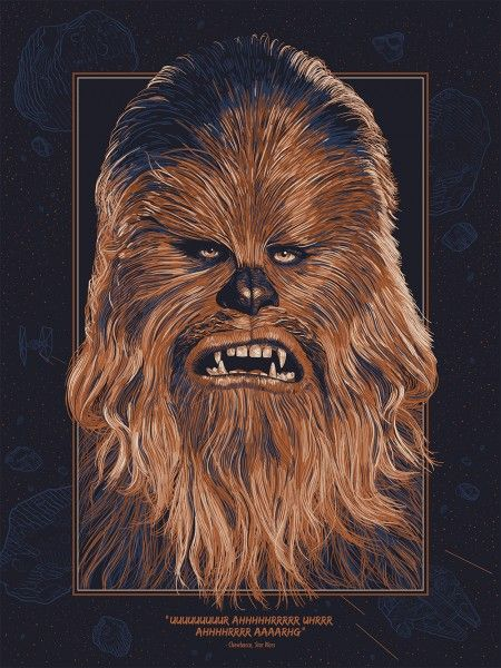 chewbacca-poster-hero-complex-gallery