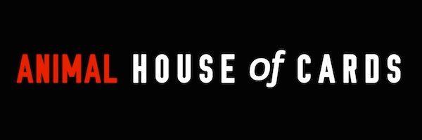 house-of-cards-parody-slice