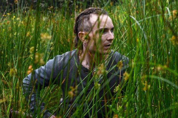 the-survivalist-image