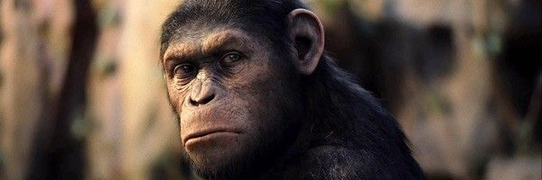 rise-of-the-planet-of-the-apes-slice