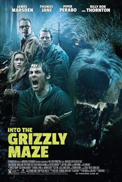 into-the-grizzly-maze-poster