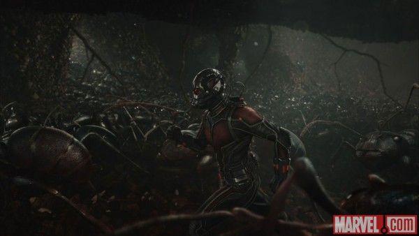 ant-man-image