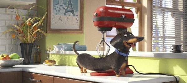 the-secret-life-of-pets-movie-image-6