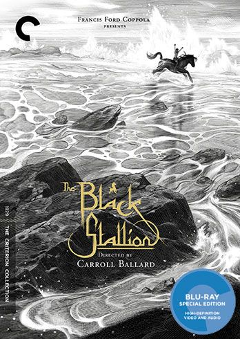 the-black-stallion-blu-ray