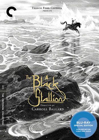the-black-stallion-blu-ray