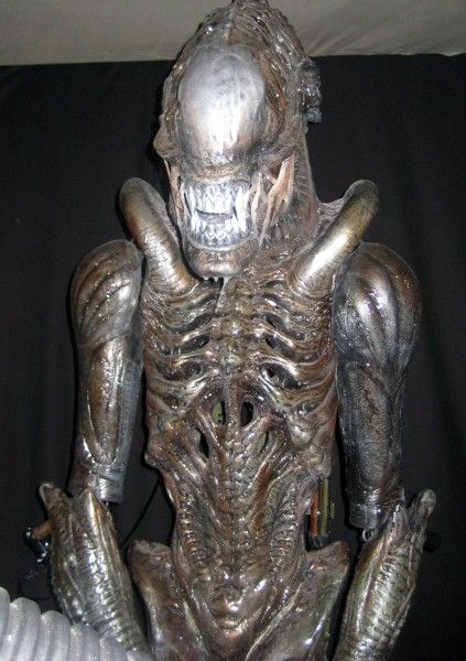 alien-vs-predator-avp-maze-1