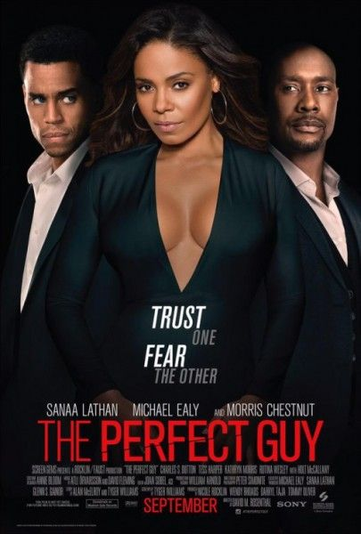 the-perfect-guy-poster