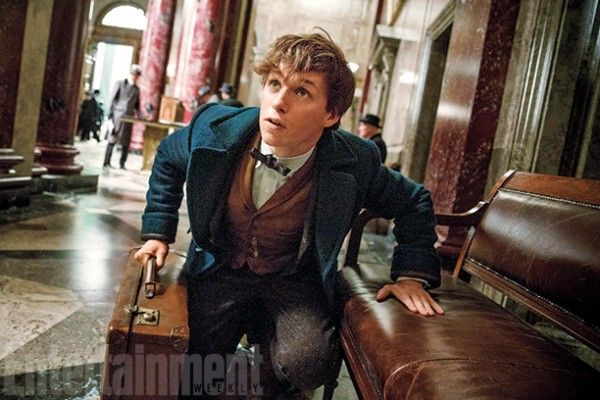 fantastic-beasts-and-where-to-find-them-image-movie (1)