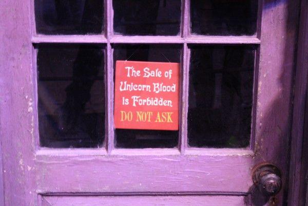 harry-potter-studio-tour-london-image (251)