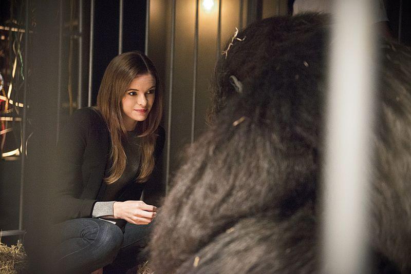 The flash season 2 gorilla warfare recap