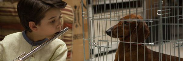 wiener-dog-movie-image