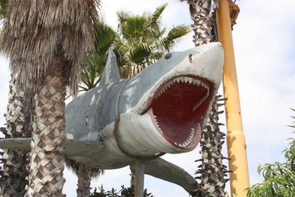 jaws-model-bruce
