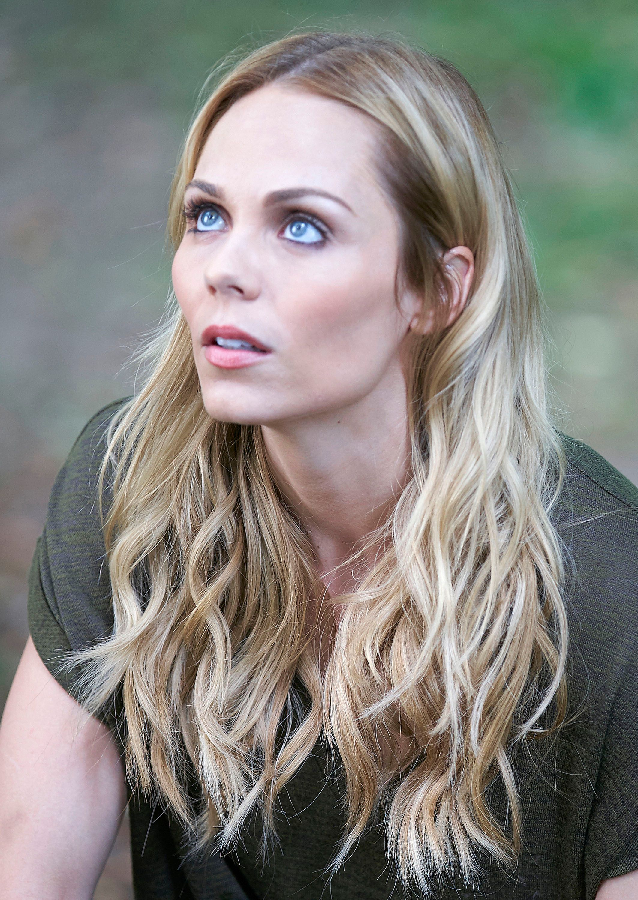 Laura Vandervoort earned a  million dollar salary - leaving the net worth at 5 million in 2017