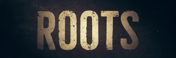 roots-slice