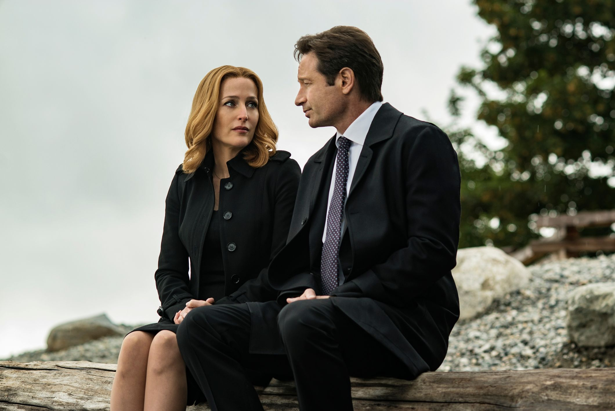 x files themes of the common and On this week's radio motherboard, how the x files theme song was made listen here and subscribe on itunes hollywood, california, 1992 mark snow was in his garage studio tinkering with some.