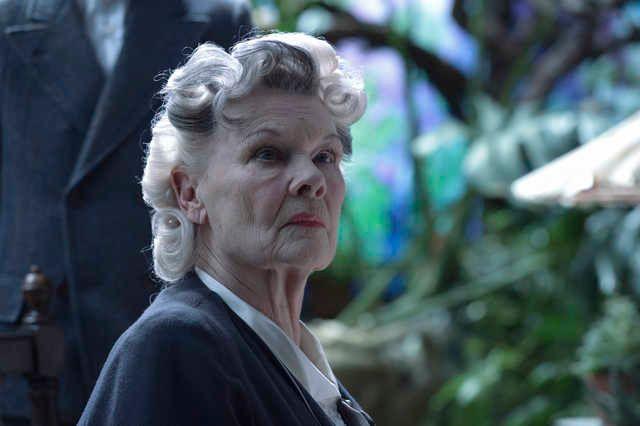 Bintang senior Judi Dench tampil hanya sepintas dan tidak signifikan di dalam film ini.