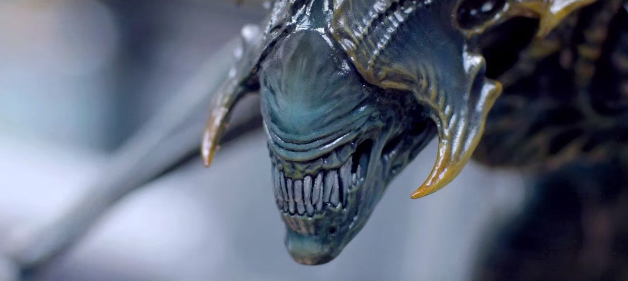 Alien King Makes His Royal Debut on #AlienDay426 | Collider