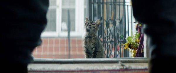 keanu-cat