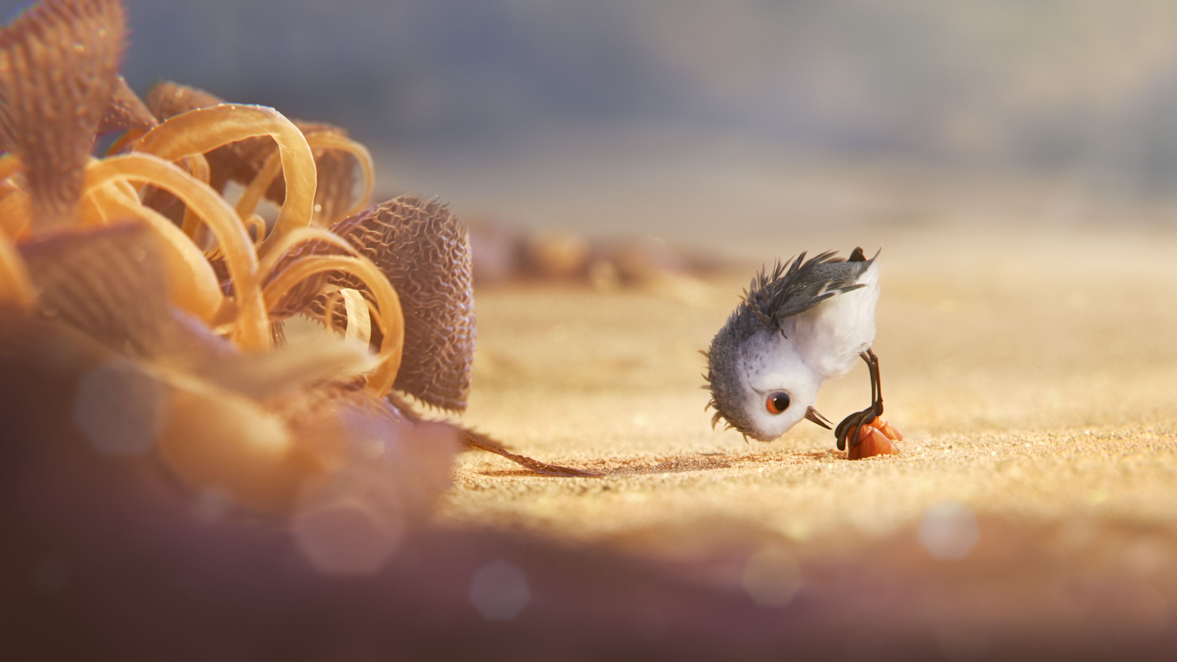 Piper 12 Things To Know About New Pixar Short Film Collider