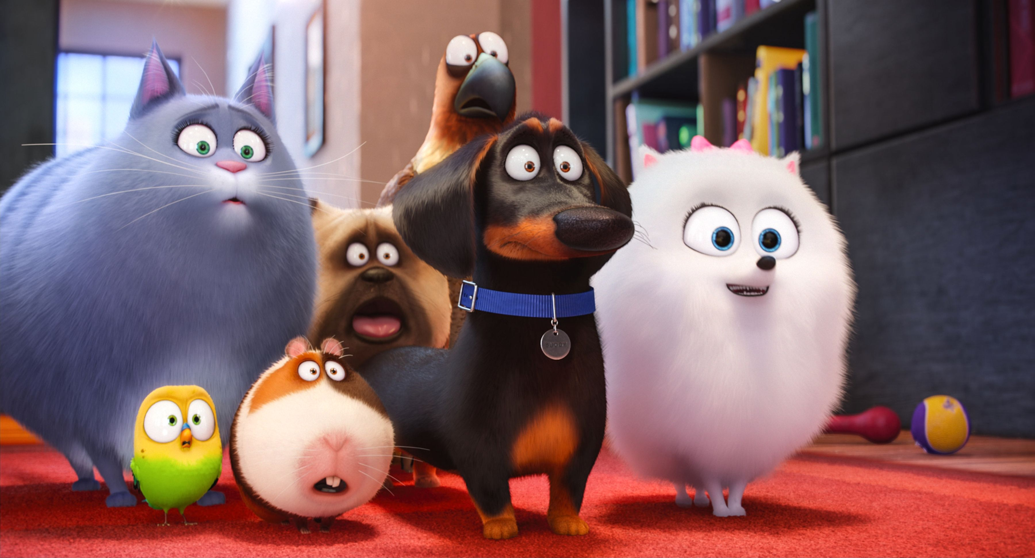 the secret life of pets 2 release date set for 2018 collider