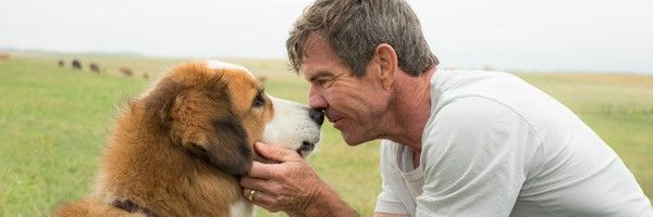 a-dogs-purpose-trailer-dennis-quaid