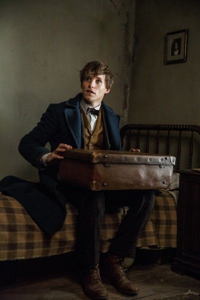 fantastic-beasts-and-where-to-find-them-eddie-redmayne-image