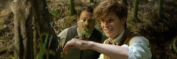 fantastic-beasts-and-where-to-find-them-images-eddie-redmayne