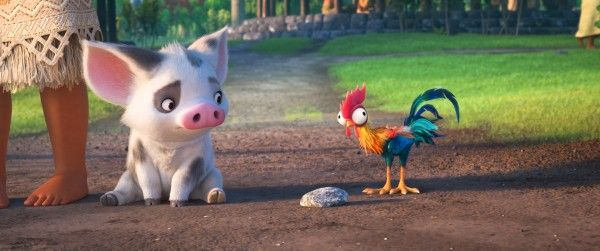 moana-pig-bird