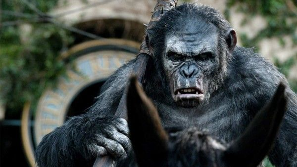 war-for-the-planet-of-the-apes-koba