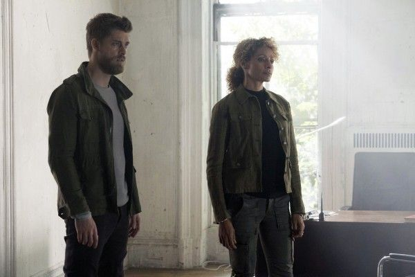 blindspot-michelle-hurd-luke-mitchell