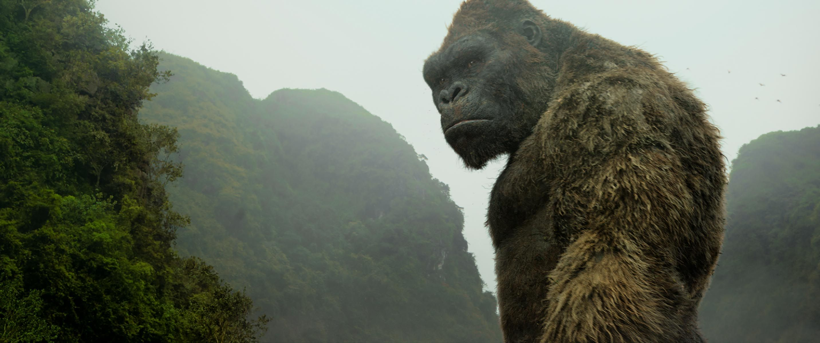 Kong: Skull Island: Check Out Over 40 Images from Reboot ...