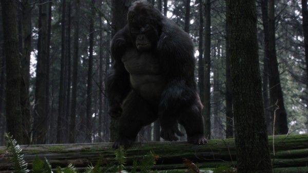 the-flash-season-3-attack-on-gorilla-city-3