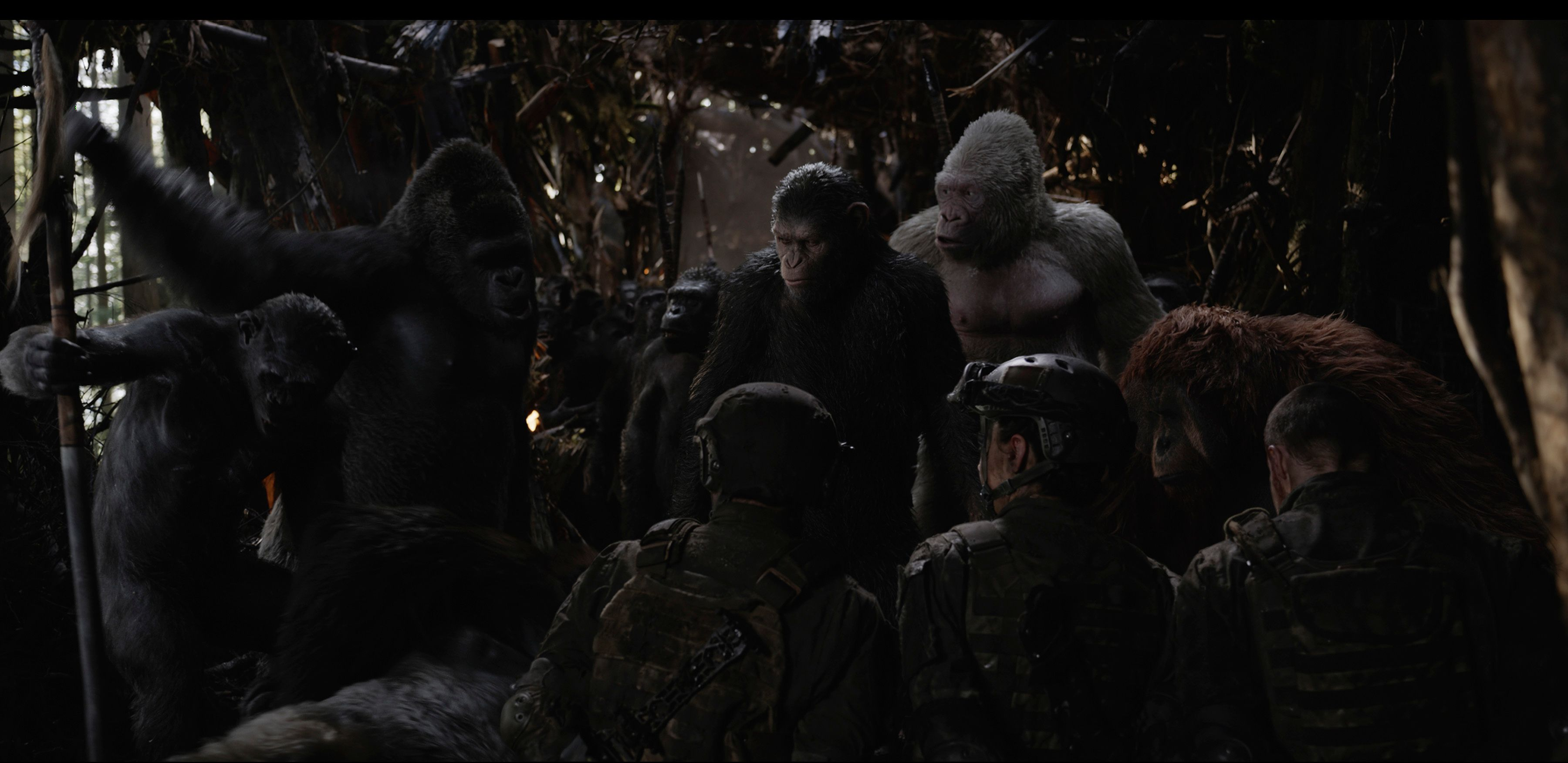war for the planet of the apes full movies download in hindi