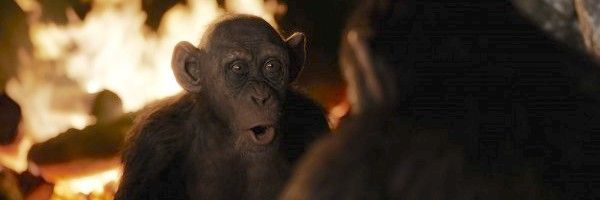 war-for-the-planet-of-the-apes-steve-zahn-bad-ape-clip