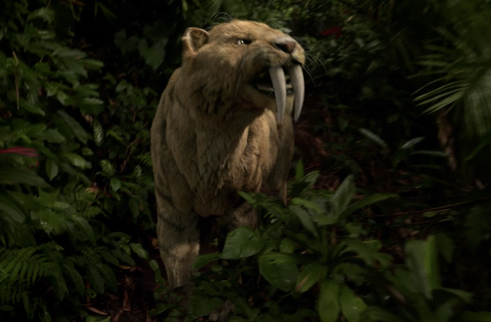 Cbs Zoo Explained 8 Reasons To Watch This Summer Series Collider