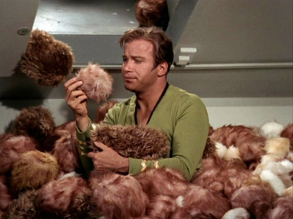 Trouble With Tribbles